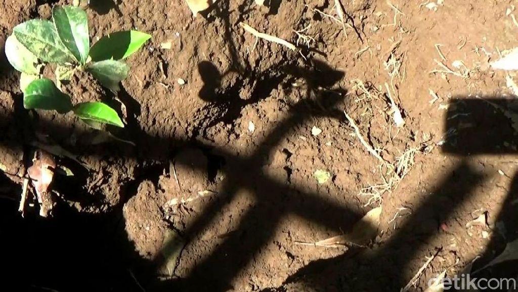 TKP Lubang Bayi yang Dikubur Hidup-hidup Ibunya di Purwakarta