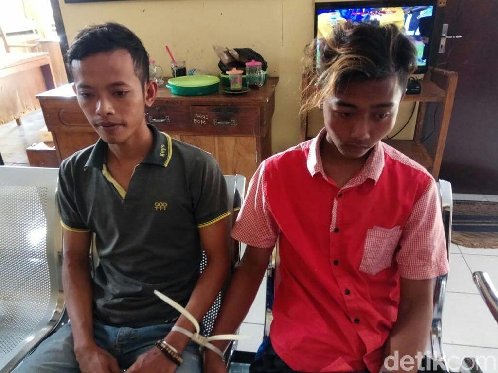 Gasak Ribuan Bibit Ikan Kerapu, Tiga Pemuda di Situbondo Dibui