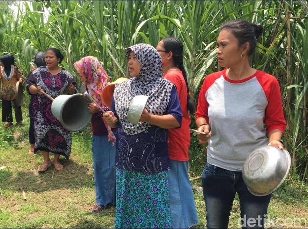 Tukang Pijit Hilang Saat Cari Rumput, Warga Gelar Buk-buk Neng