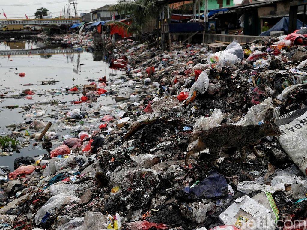 Miris, Sampah Berserakan dan Menumpuk di Sungai Dadap