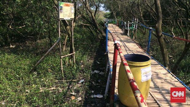 Bergulat Menuju Ekowisata Mangrove di Utara Bekasi