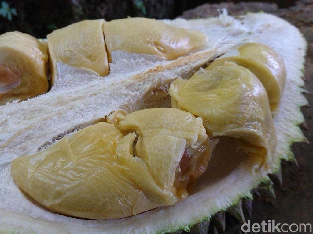 Dikira Mabuk Alkohol Usai Makan Durian, Pria Ini Diinterogasi Polisi