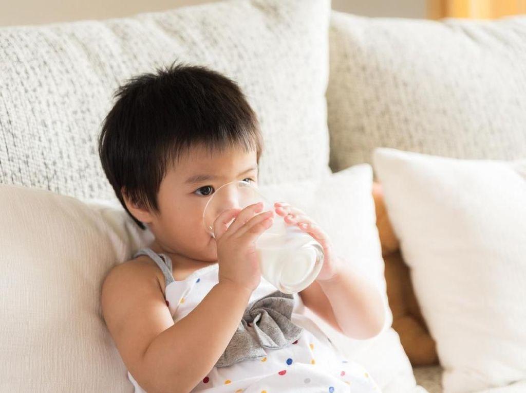 Bolehkah Anak Satu Tahun Konsumsi Susu Sapi?