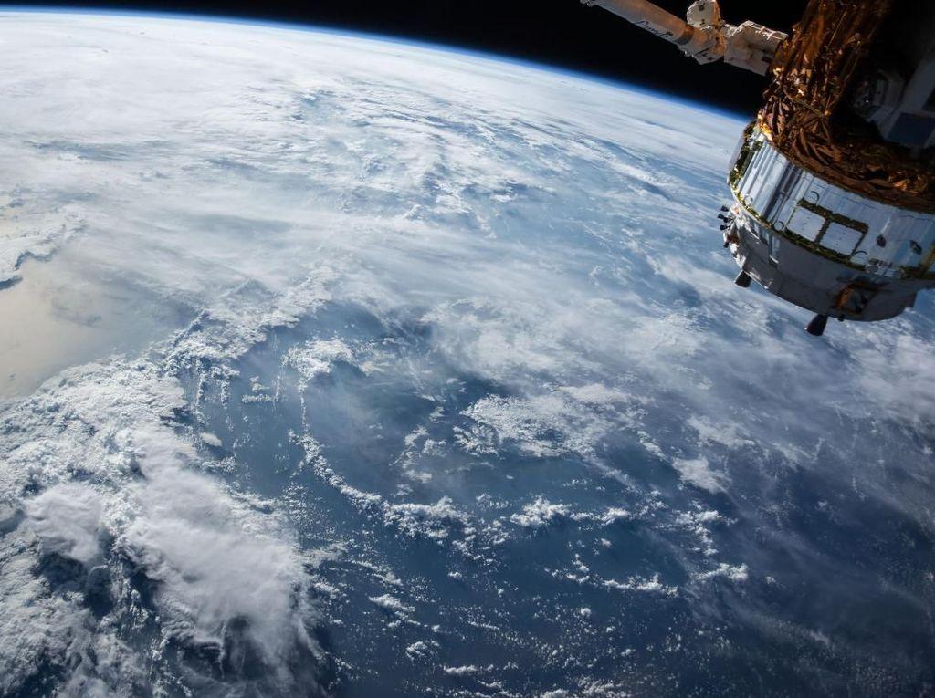 Satelit Bisa Dipakai untuk Lindungi Hiu Langka, Ini Caranya