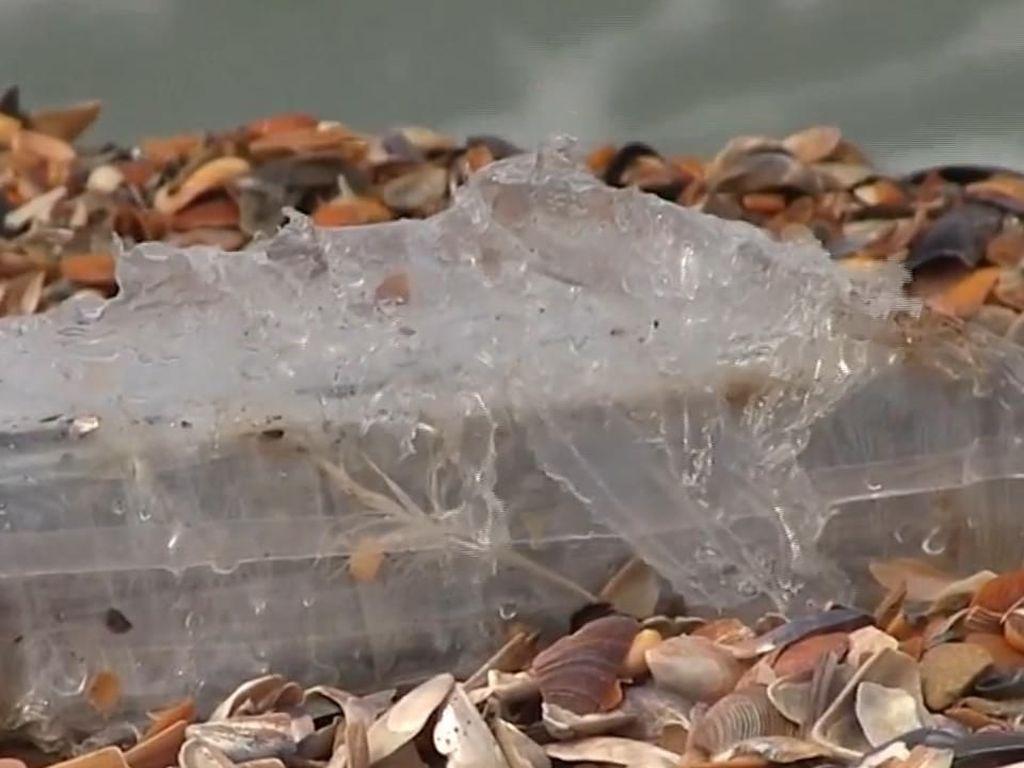150 Kg Kokain Tercecer di Pantai Rumania