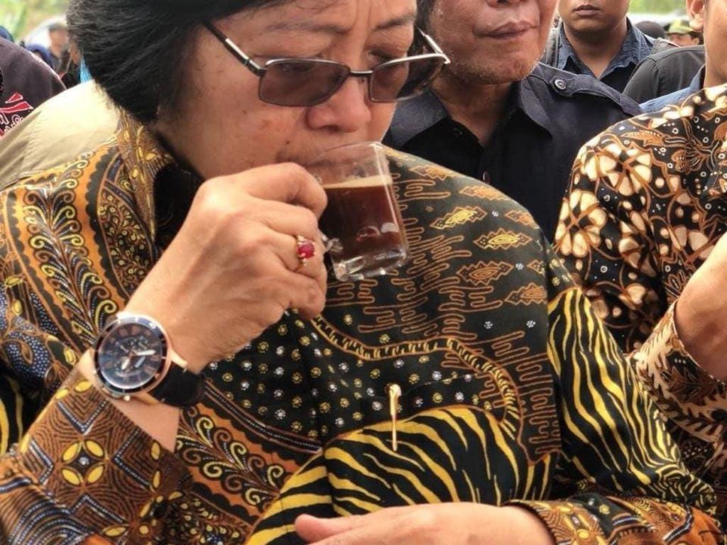 Momen Menteri LHK, Siti Nurbaya Saat Ngopi dan Cicip Mangga Alpukat
