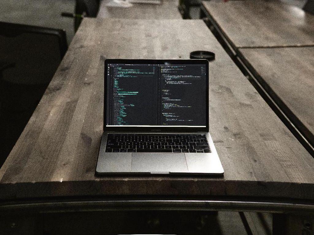 Pemerintah Anggarkan Rp 145 Miliar untuk Kembangkan Talenta Digital