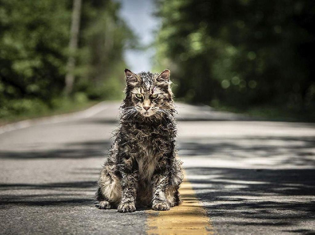 Pet Sematary: Legenda Kuburan Hewan Yang Mengerikan
