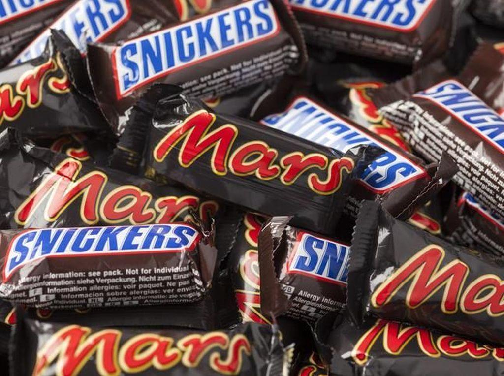 Wouw! Perusahaan Ini Cari Anak Magang Untuk Cicip Cokelat Enak
