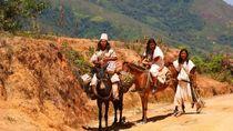 Kisah Penjaga Bumi Kuno Turun Gunung Karena Perubahan Iklim