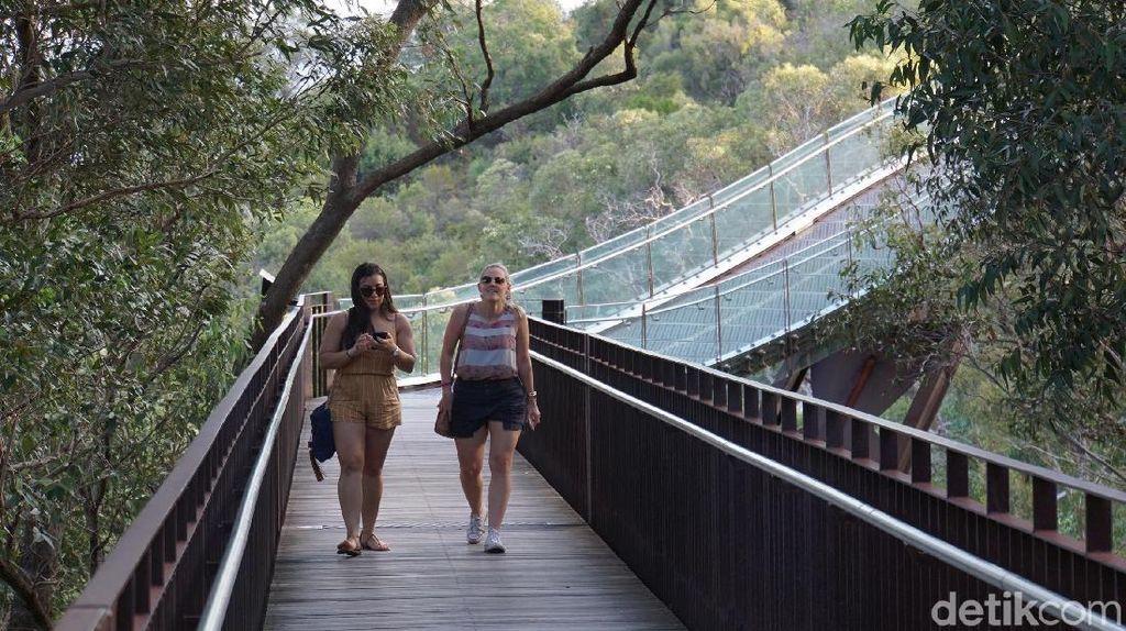 Foto: Kings Park di Perth, Taman Kota Terbesar Sedunia