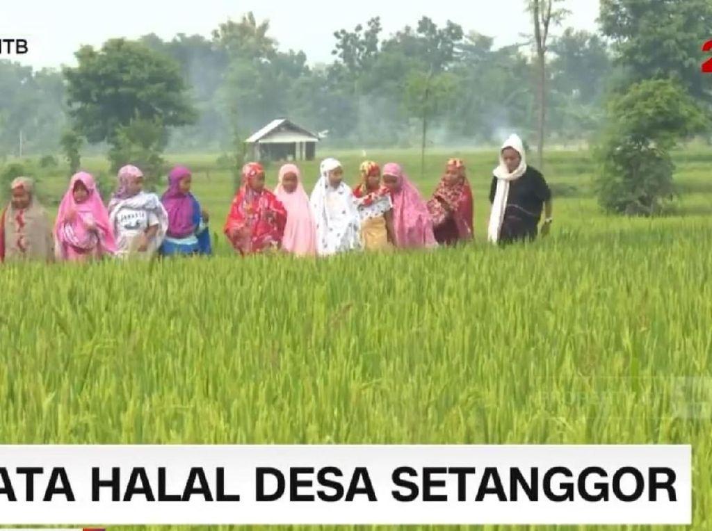 Damainya Destinasi Wisata Islami Desa Setanggor di Lombok