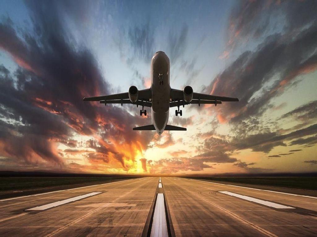 Seru! Bandara Ini Sediakan Lubang Khusus untuk Motret Pesawat