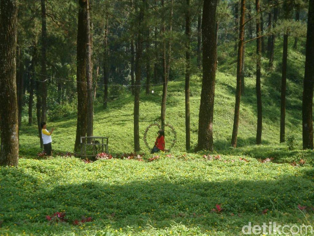 10 Tempat Wisata di Purwokerto yang Bernuansa Alam, Cocok untuk Melepas Penat