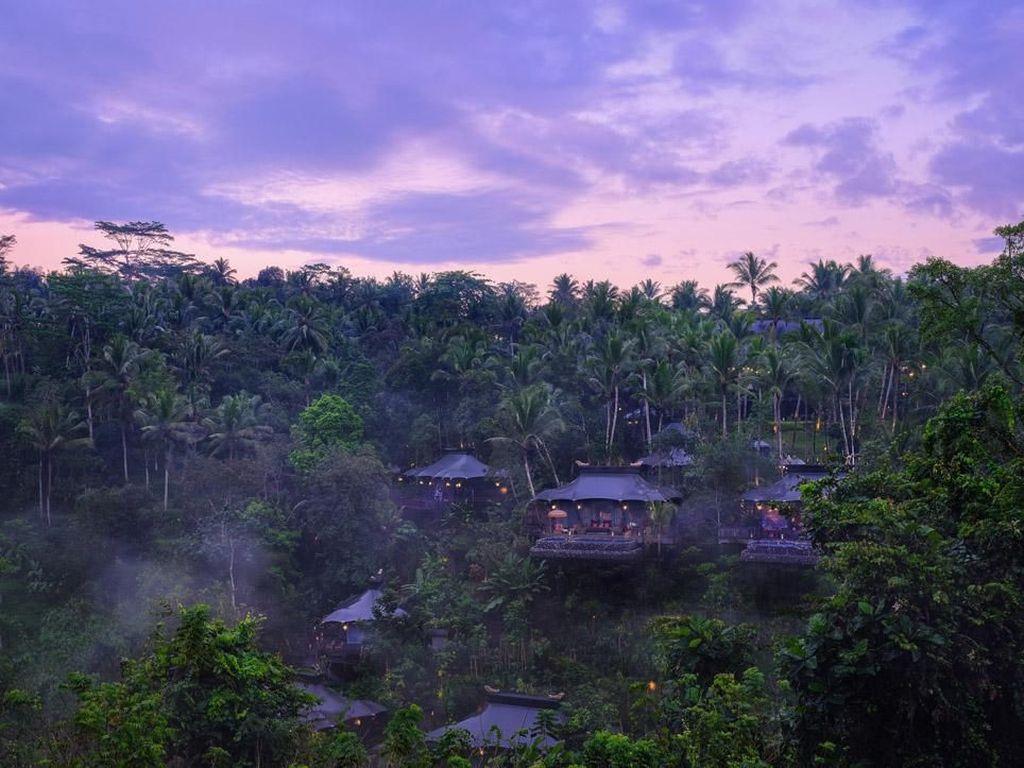 Foto: 10 Hotel Baru yang Hits 2019, 1 dari Bali