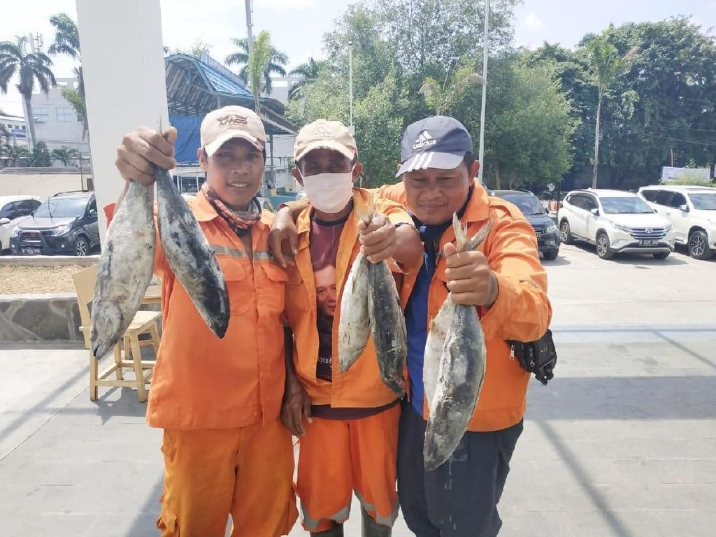 Bisa Tukar Sampah dengan 1 Kilo Ikan di Pasar Muara Baru