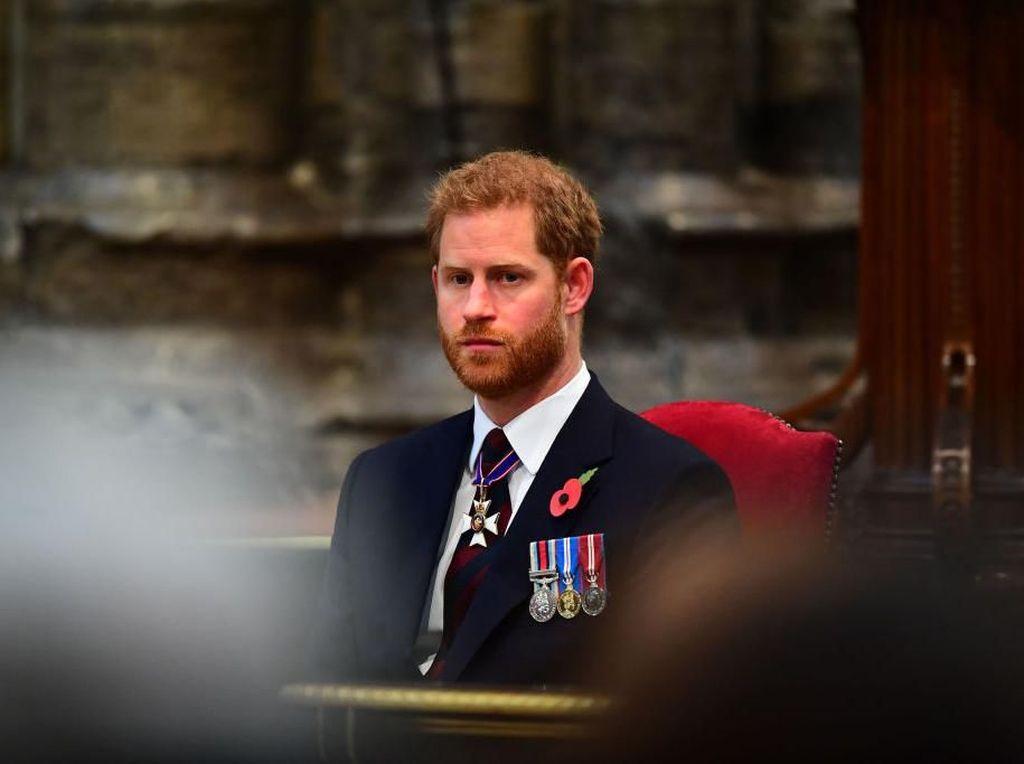 Pangeran Charles Positif Corona, Pangeran Harry Frustrasi