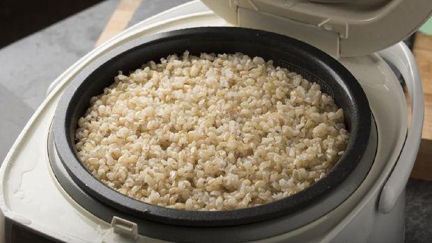 ilustrasi rice cooker