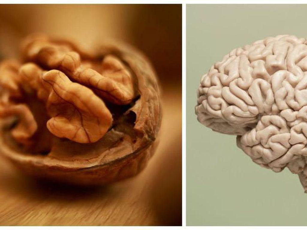 Mirip Otak dan Tulang, Makanan Ini Persis Bagian Tubuh Manusia