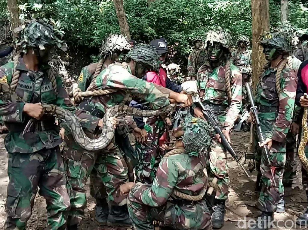 Menengok Pendidikan Komando TNI AL: Latihan Perang Hingga Makan Ular