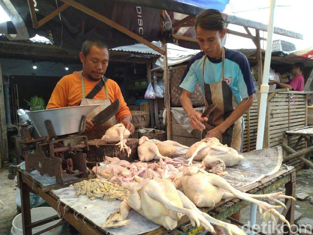 Harga Ayam Potong Naik, Pedagang Keluhkan Laba Turun 50 Persen