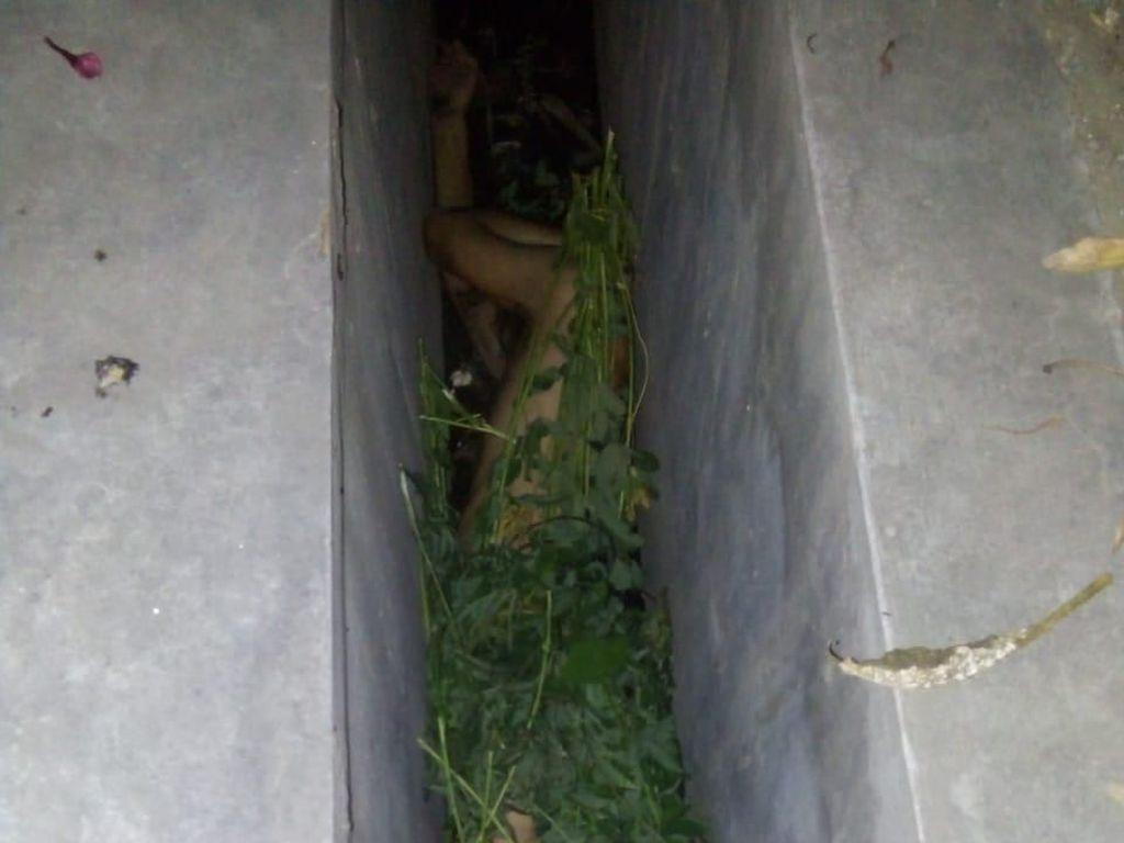 Ditemukan di Parit, Andrei Spiridonov Sembunyi Telanjang Ditutupi Semak
