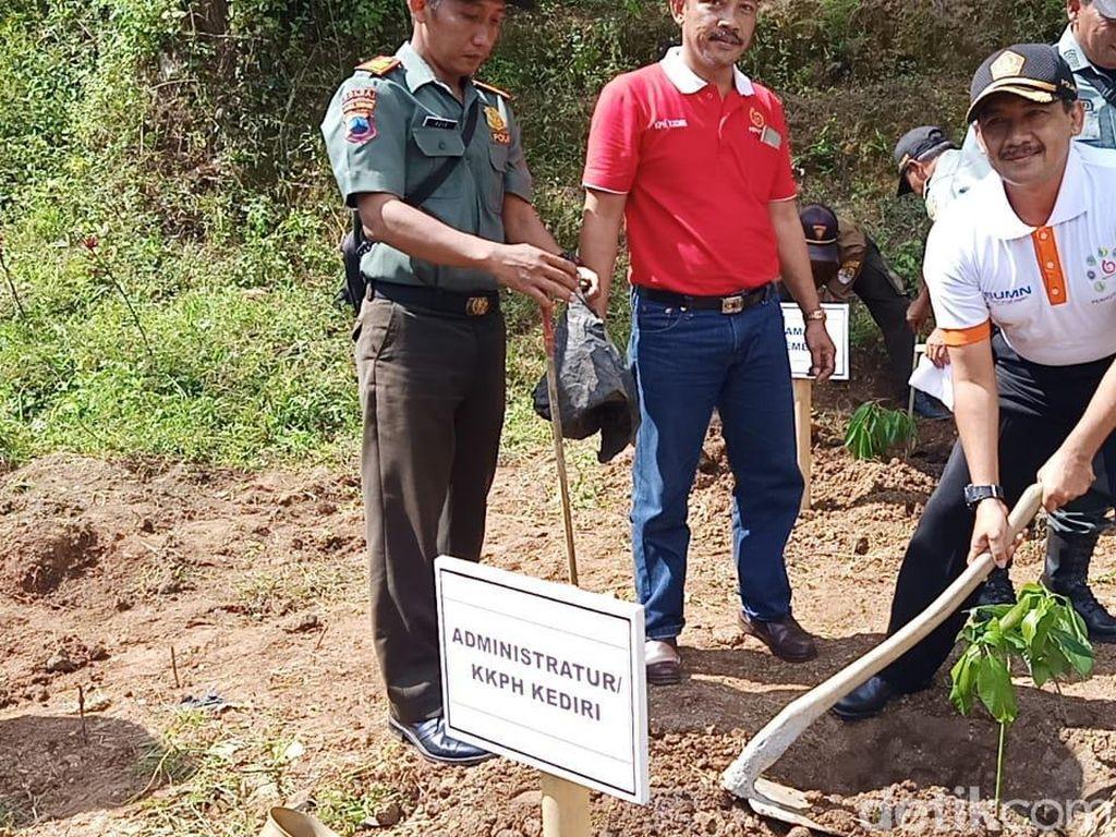 3.900 Bibit Pohon Ditanam di Lereng Gunung Wilis untuk Selamatkan Air