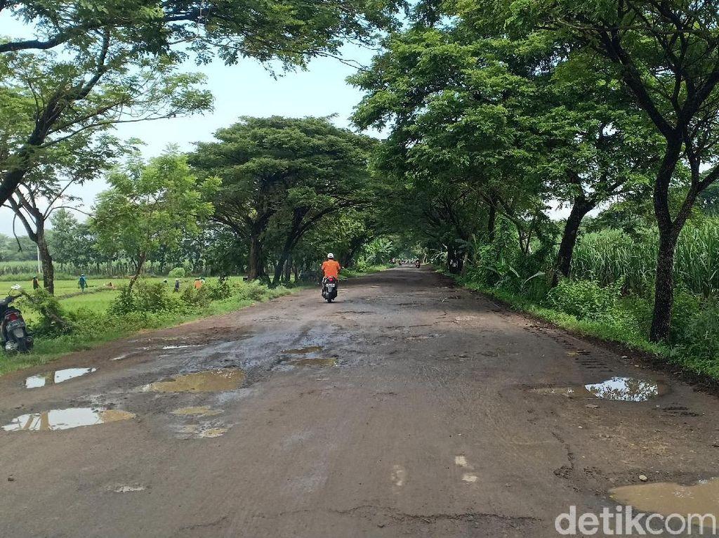 Jalan Sepanjang 5 KM di Kecamatan Madiun dan Sawahan Rusak Parah