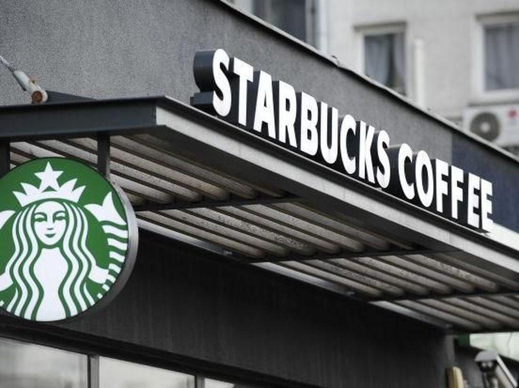 Luhut Ungkap Starbucks Mau Investasi di Papua