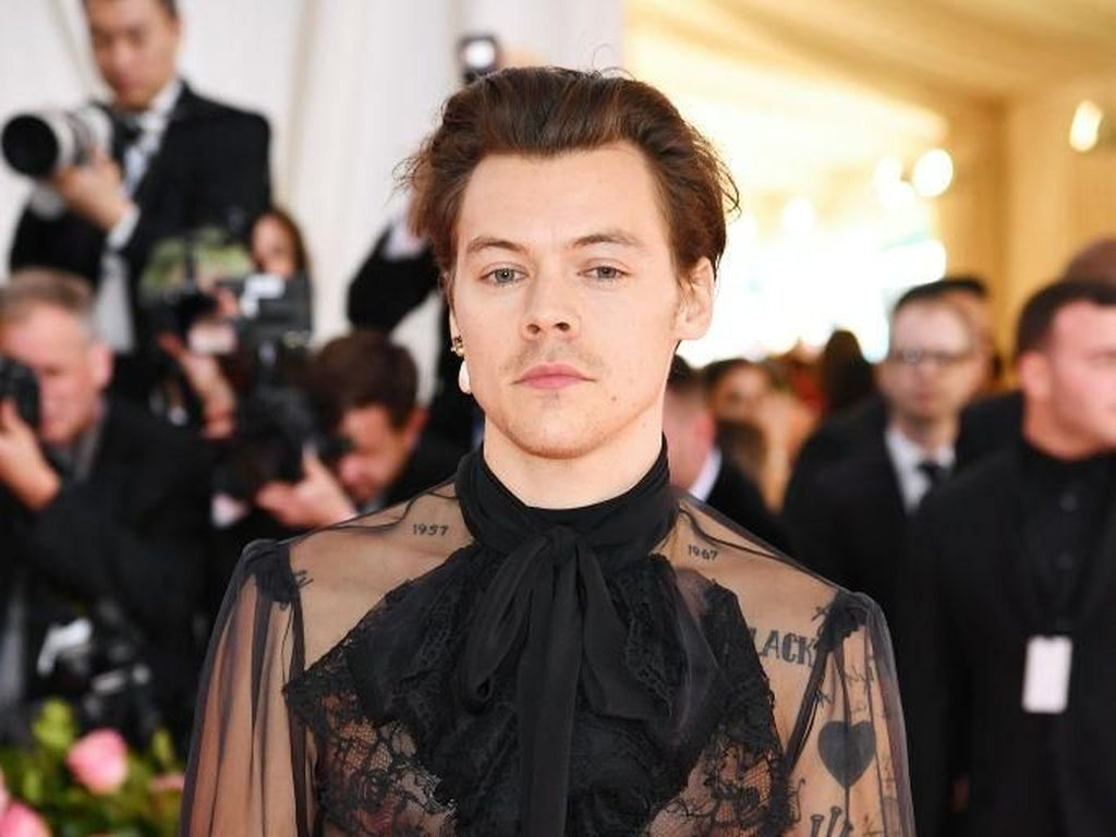 Harry Styles Tolak Peran di Little Mermaid