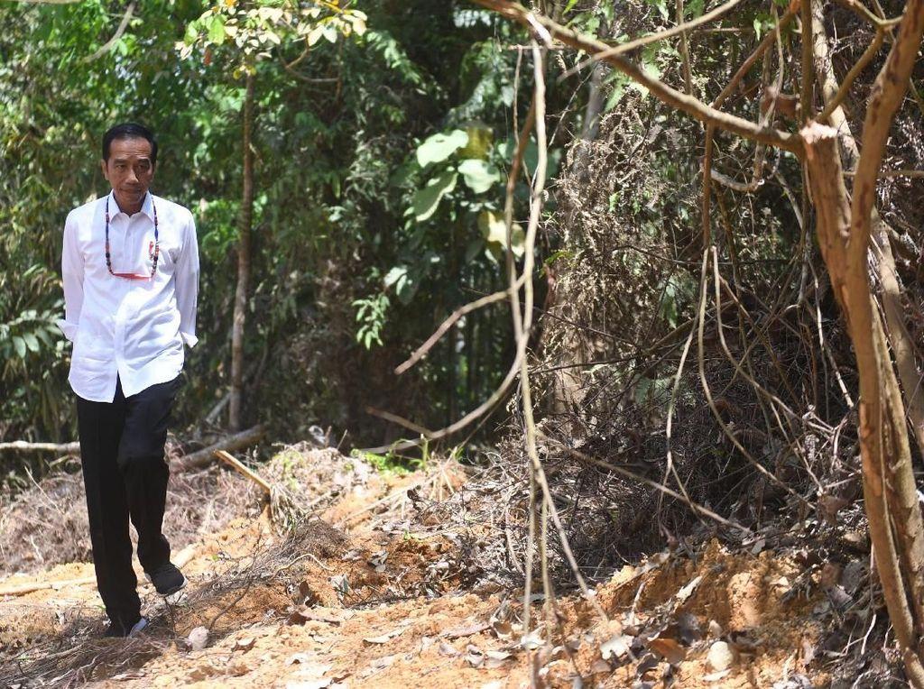 Kalimantan Timur Punya Peluang Besar Jadi Ibu Kota Baru RI