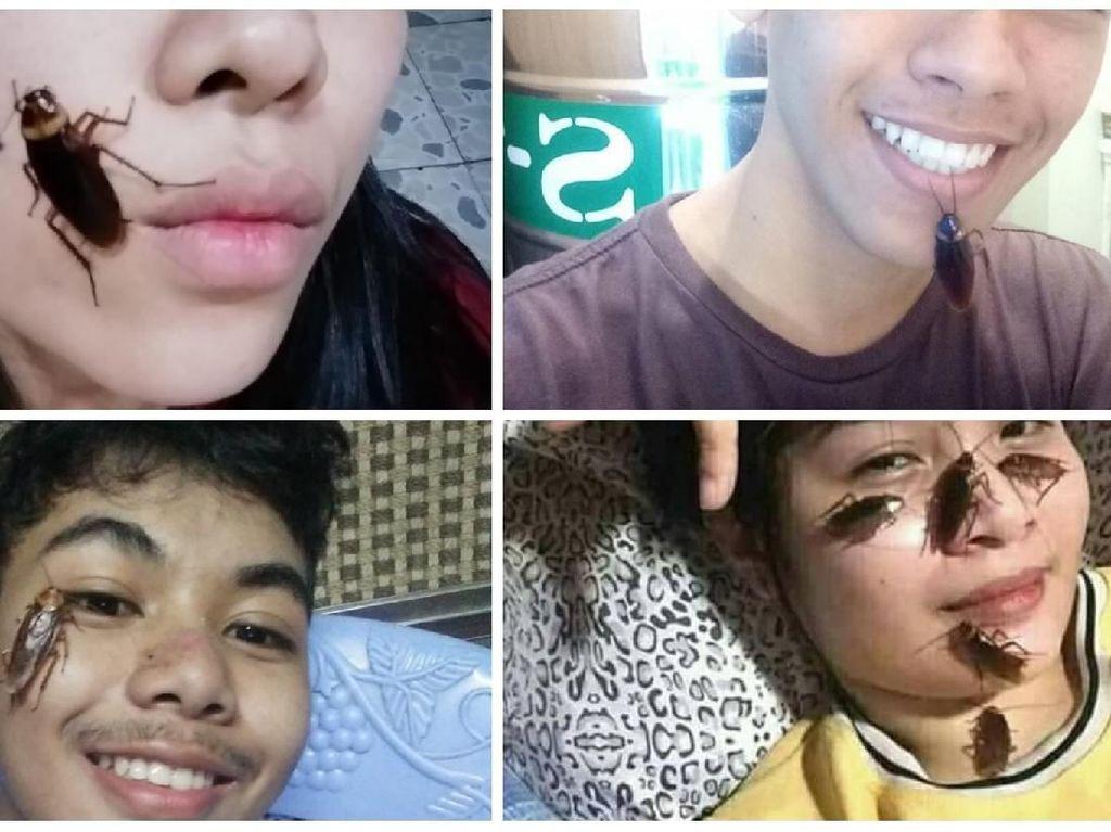 Viral Challenge Taruh Kecoa di Wajah, Banyak Netizen Komentar Jijik