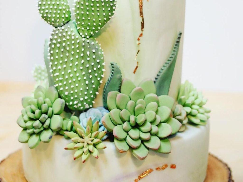 Keren! Kue Kaktus dan Sukulen Ini Persis Aslinya