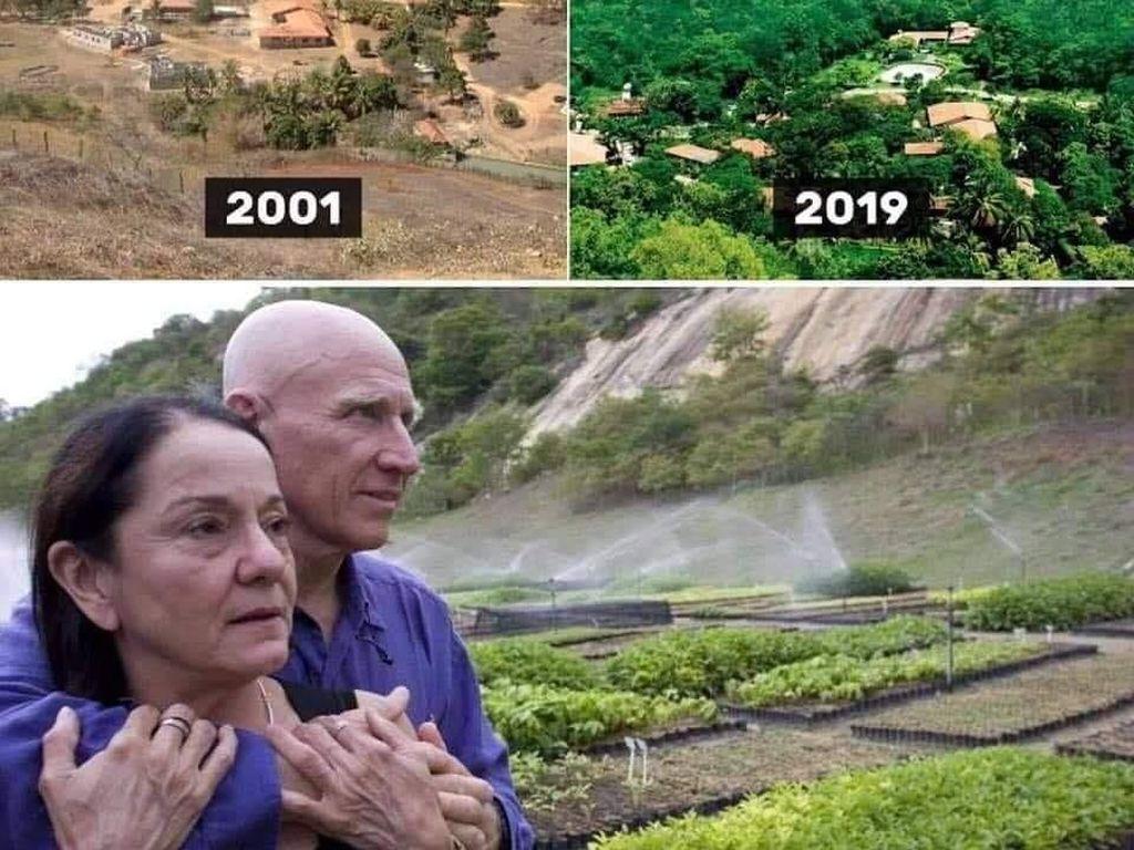 Keren Banget, Pasangan Ini Ubah Hutan Gundul Kembali Hijau dalam 20 Tahun