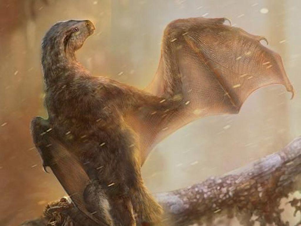 Rupanya Dinosaurus Ada yang Punya Sayap Mirip Kelelawar