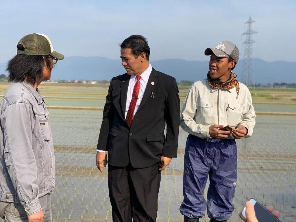 Tinjau Sawah, Mentan Dapat Ilmu dari Petani Jepang