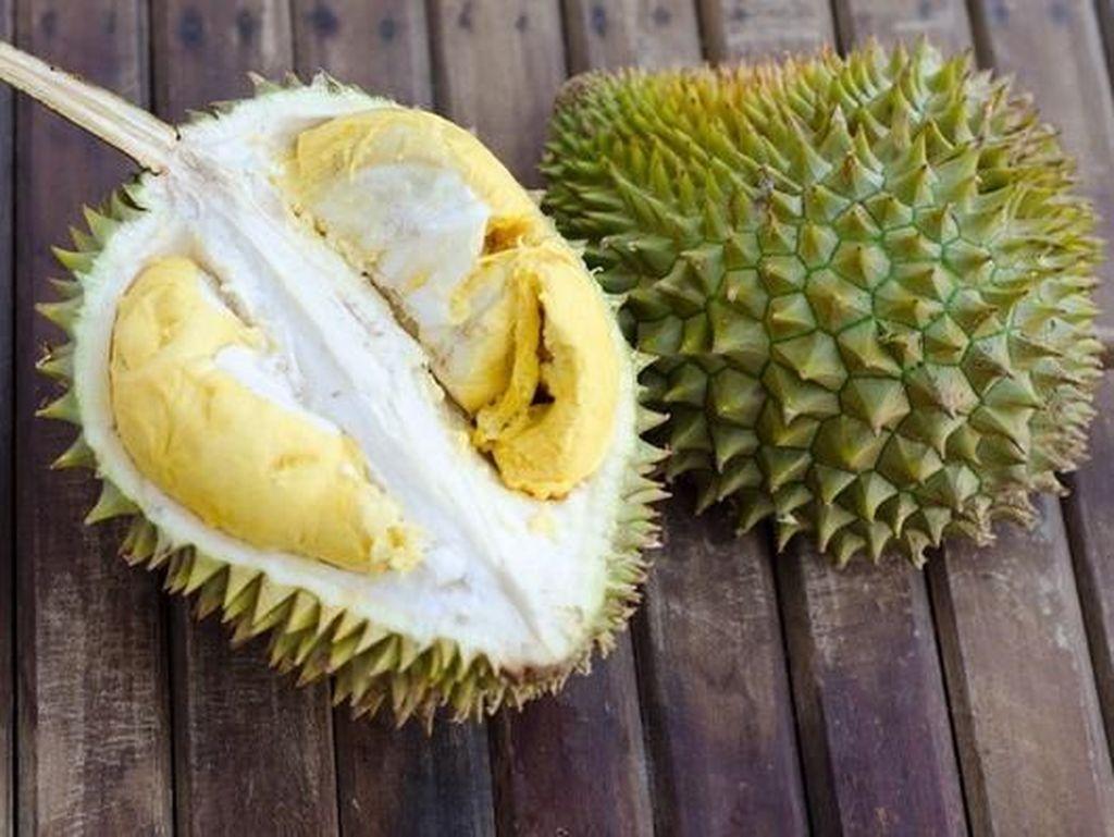 Pencinta Durian, Riau Saat Ini Dilanda Banjir Durian Lezat