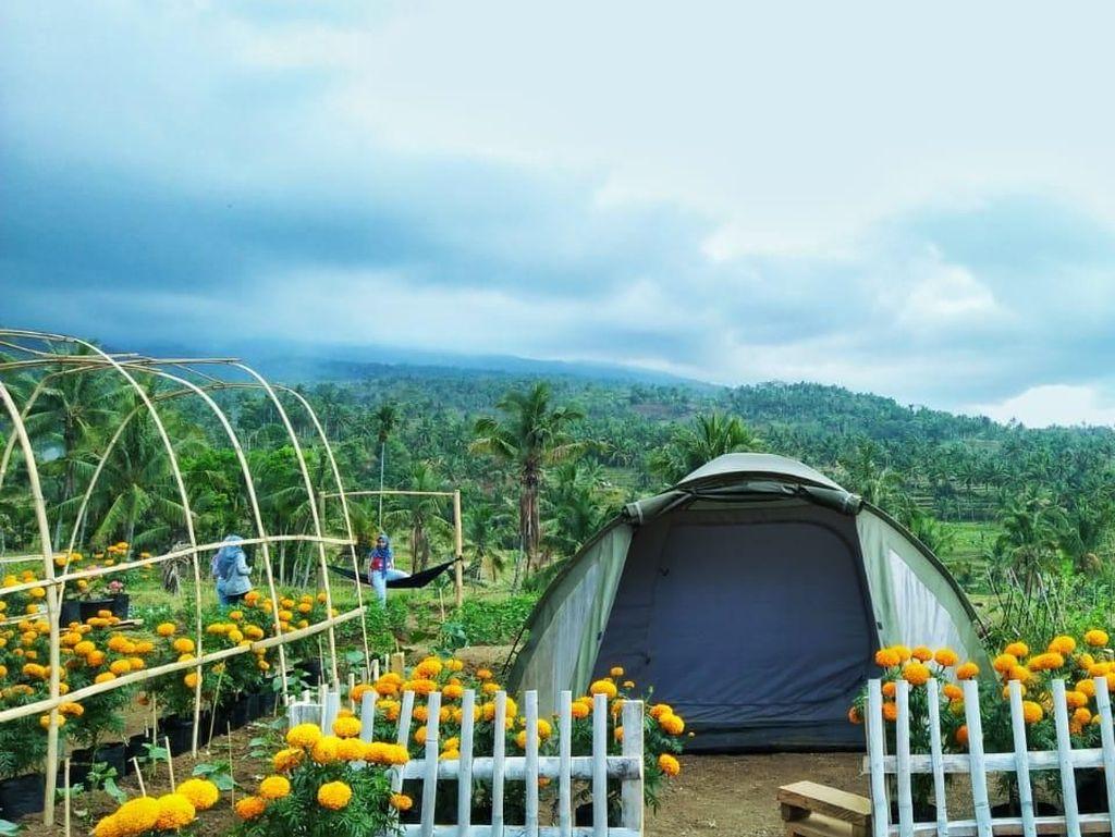 Lombok Timur Tetapkan 18 Desa Wisata, Apa Saja?