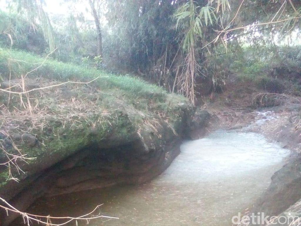 Tercemar Limbah Pabrik Tahu, Ribuan Ikan di Sungai Magetan Mati