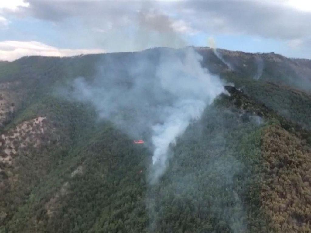 Hutan di Pegunungan China Terbakar, 460 Pemadam Dikerahkan