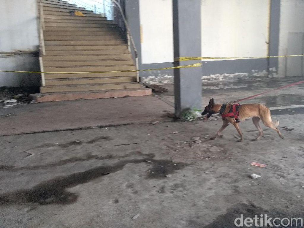 Anjing Pelacak Dikerahkan Cari Petunjuk Baru Mutilasi Pasar Besar Malang