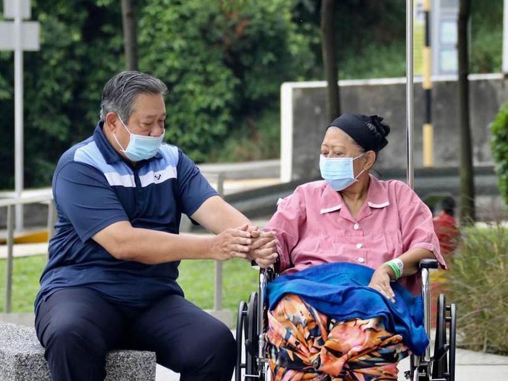 5 Fakta Leukemia, Penyakit Kanker Darah yang Tengah Diidap Ani Yudhoyono