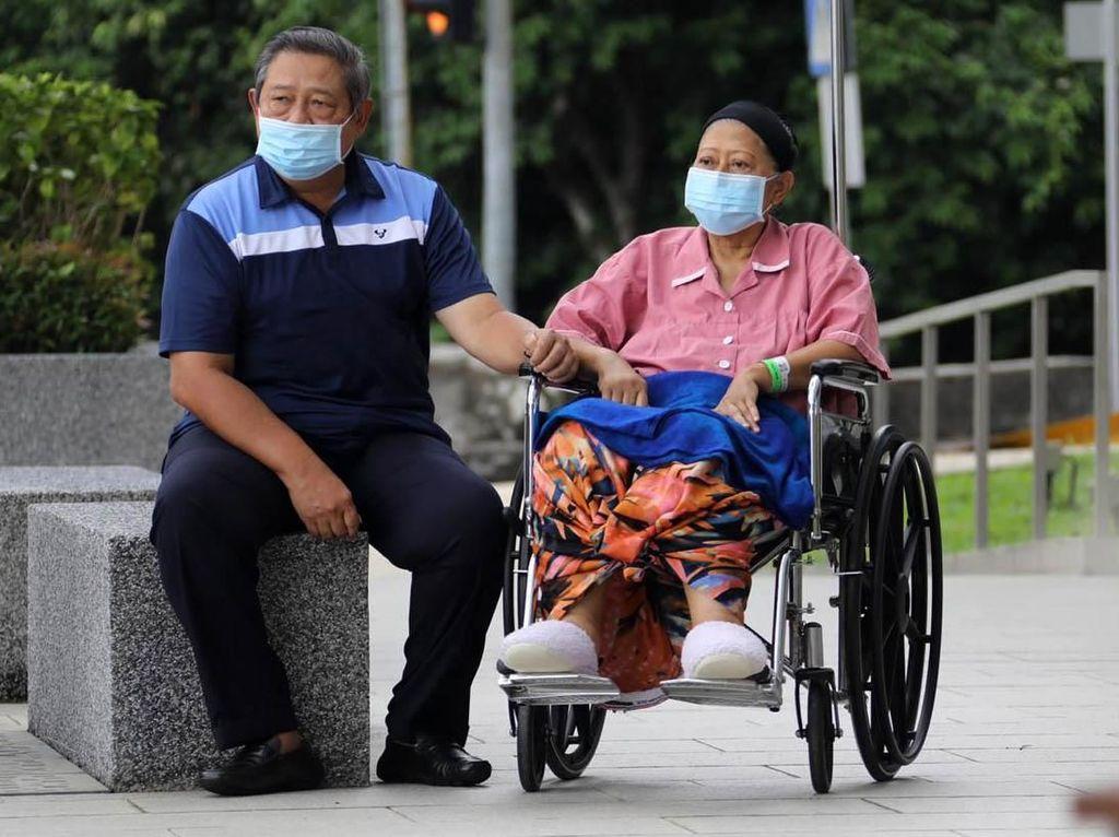 Demokrat: Demam Ani Yudhoyono Sudah Turun