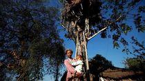 Cerita Rumah Pohon dan Gajah Mematikan