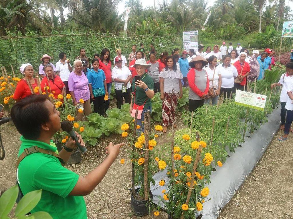 Pembinaan Petani Wanita untuk Nutrisi Keluarga