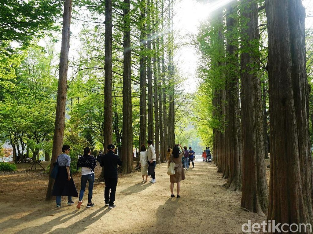 Foto: Negara Dalam Negara di Korea Selatan