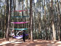 Spot foto hammock (Pradito/detikcom)