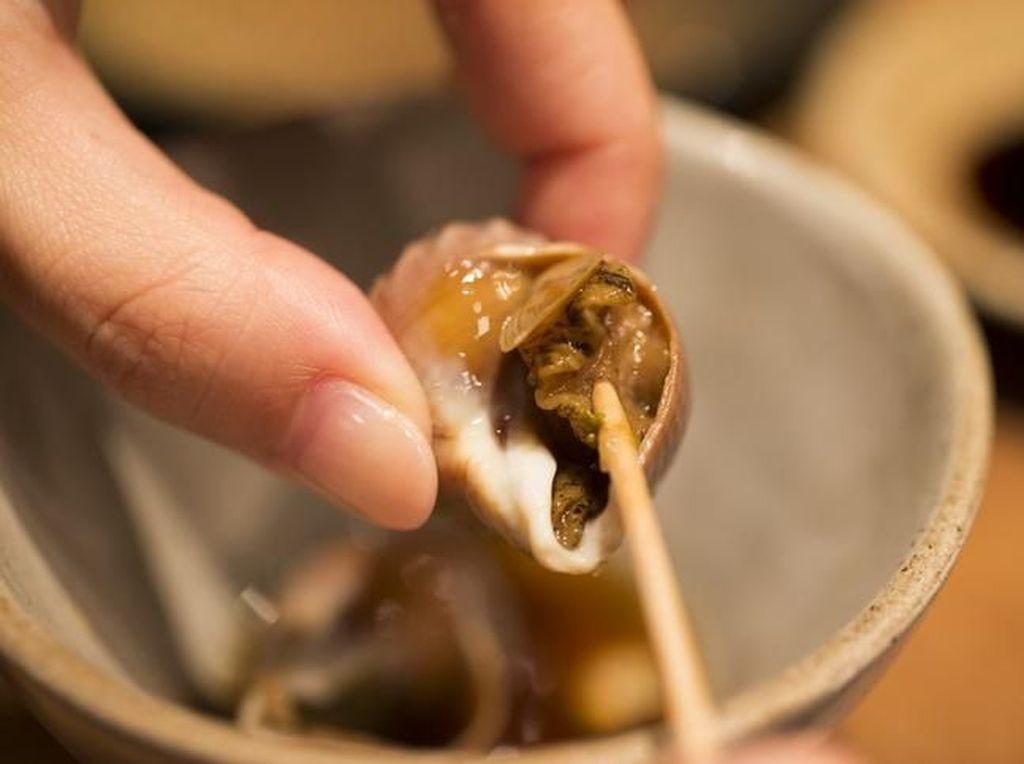 Cacing Pita Bersarang di Otak Pria Ini Selama 15 Tahun Karena Makan Siput