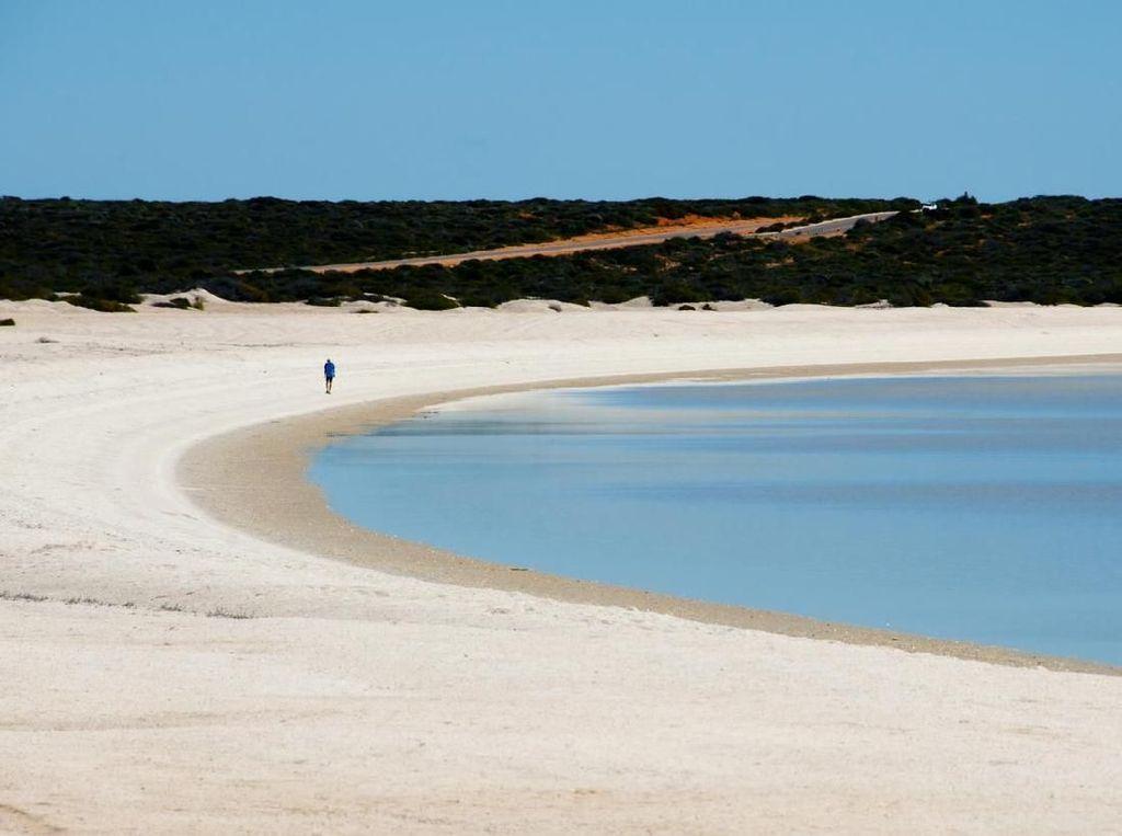 Foto: Pantai yang Berpasir Cangkang Kerang