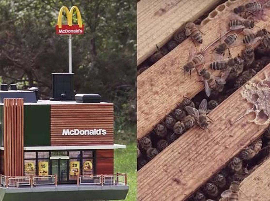 Mungil Banget, Ini Restoran McDonalds Terkecil di Dunia